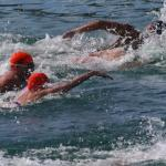 Glenelg Open Water Swim 2009 - 4